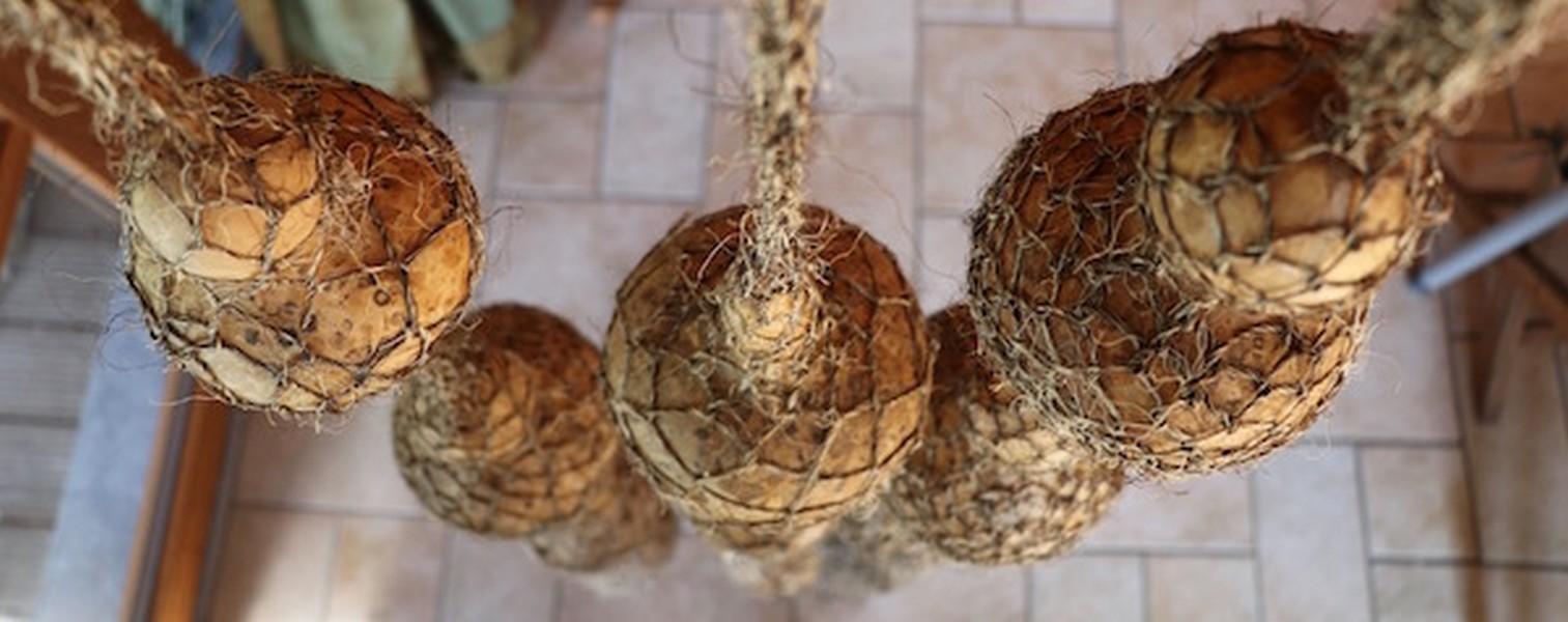 Schwung M: kalebassen, touw